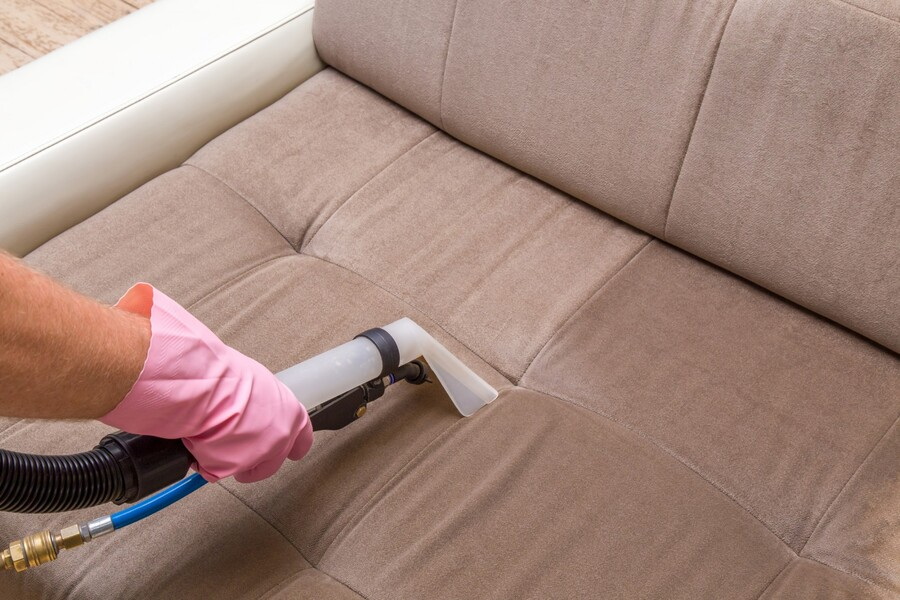 Upholstery cleaning by True Eco Dry LLC
