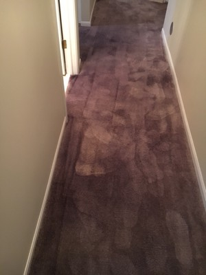 Carpet Dyeing after bleach stains